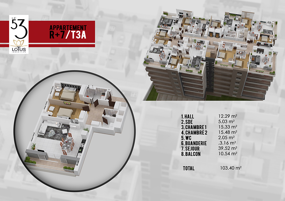 Plan appartement T3A