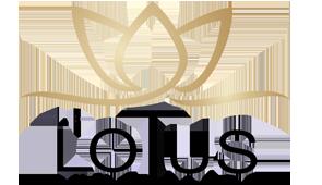 Le Lotus immobilier